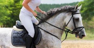 Muchacha que monta un caballo Imagen de archivo