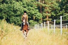 Muchacha que monta un caballo en naturaleza Foto de archivo libre de regalías