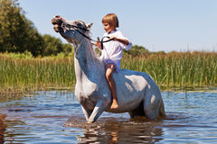 Muchacha que monta un caballo en un río imagen de archivo