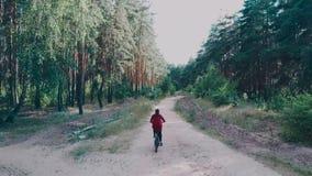 Muchacha que monta una bici rodeada por los árboles verdes en un día claro, visión superior Mujer que monta una bici en el bosque almacen de video