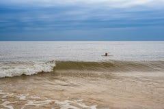 Muchacha que nada lejos en el mar en día de verano frío Imágenes de archivo libres de regalías