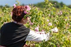 Muchacha que presenta durante el festival de la cosecha de Rose en Bulgaria Foto de archivo libre de regalías
