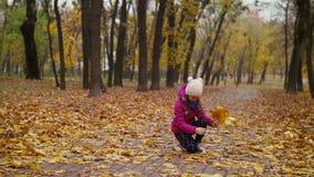 Muchacha que recoge el ramo del otoño de follaje caido almacen de video