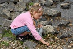 Muchacha que recoge shelles por el mar Imagen de archivo libre de regalías