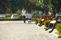 Muchacha que recorre con un perro Foto de archivo libre de regalías