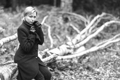 Muchacha que recorre en parque del otoño El sentarse en un árbol La muchacha en Imagen de archivo
