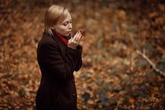 Muchacha que recorre en parque del otoño El sentarse en un árbol Muchacha en la madera Imagen de archivo