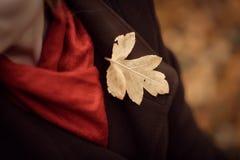 Muchacha que recorre en parque del otoño El sentarse en un árbol Muchacha en la madera Imágenes de archivo libres de regalías