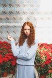 Muchacha que se coloca entre las flores rojas Foto de archivo libre de regalías