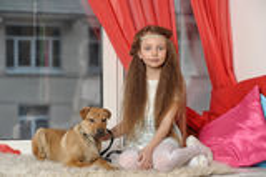 Muchacha que se sienta con un perrito en sus brazos Imagen de archivo