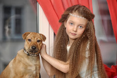 Muchacha que se sienta con un perrito en sus brazos Fotografía de archivo libre de regalías