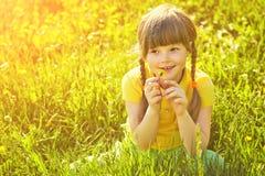 Muchacha que se sienta en la hierba con el diente de león Imagen de archivo
