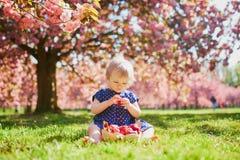 Muchacha que se sienta en la hierba y que come las fresas imagen de archivo libre de regalías