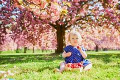 Muchacha que se sienta en la hierba y que come las fresas fotos de archivo libres de regalías