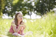 Muchacha que se sienta en planta del diente de león del campo del verano que sopla Foto de archivo libre de regalías