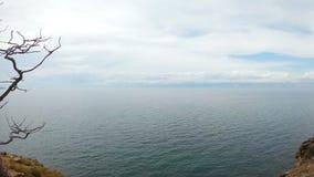 Muchacha que se sienta en un ?rbol en la orilla del lago Baikal almacen de video