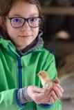 Muchacha que sostiene el pequeño polluelo Fotografía de archivo