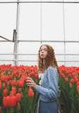 Muchacha que sostiene el tulipán Foto de archivo