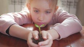 Muchacha que sostiene la planta verde joven en manos Concepto y símbolo del crecimiento, cuidado, protegiendo la tierra, ecología almacen de video