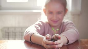 Muchacha que sostiene la planta verde joven en manos Concepto y símbolo del crecimiento, cuidado, protegiendo la tierra, ecología almacen de metraje de vídeo