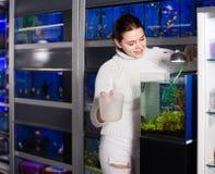 Muchacha que sostiene la red del acuario y el envase del agua al lado del acuario w Imagen de archivo
