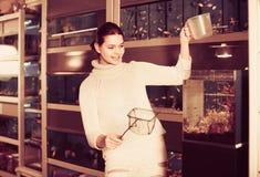 Muchacha que sostiene la red del acuario y el envase del agua al lado del acuario w Imagen de archivo libre de regalías