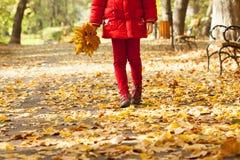Muchacha que sostiene las hojas coloridas en el parque Imágenes de archivo libres de regalías