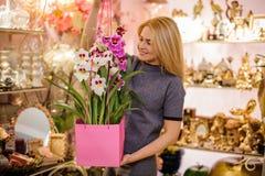 Muchacha que sostiene un ramo hermoso de flores rosadas y blancas en caja Fotografía de archivo libre de regalías