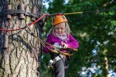 Muchacha que sube en el parque de la aventura, parque de la cuerda Fotos de archivo libres de regalías
