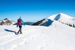 Muchacha que sube en un top nevoso de la montaña Imagen de archivo libre de regalías