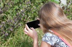 Muchacha que toma la foto de insectos Foto de archivo libre de regalías