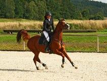 Muchacha que trota en un caballo Foto de archivo libre de regalías