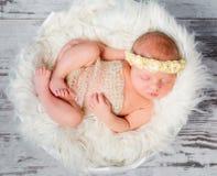 Muchacha recién nacida durmiente en cama redonda en actitud funy Fotografía de archivo libre de regalías