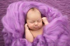 Muchacha recién nacida durmiente en un fondo rosado de las lanas, primer Fotos de archivo