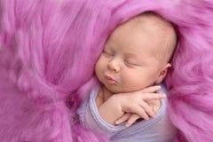 Muchacha recién nacida durmiente en un fondo rosado de las lanas, primer Imágenes de archivo libres de regalías