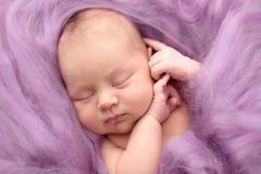Muchacha recién nacida durmiente en un fondo rosado de las lanas, primer Imagenes de archivo