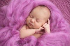 Muchacha recién nacida durmiente en un fondo rosado de las lanas, primer Fotos de archivo libres de regalías