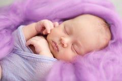 Muchacha recién nacida durmiente en un fondo rosado de las lanas, primer Foto de archivo libre de regalías