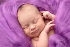 Muchacha recién nacida durmiente en un fondo rosado de las lanas, primer Imagen de archivo
