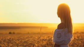 Muchacha romántica en un vestido blanco que camina en los campos de trigo de oro en el sol almacen de video