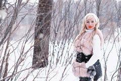 Muchacha rubia del día Nevado en un paseo en un parque del invierno Fotos de archivo