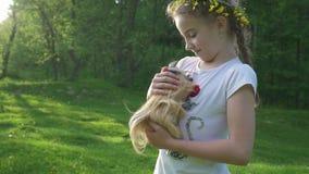 Muchacha rubia del niño que sostiene su animal de animal doméstico del conejillo de Indias Cantidad lisa del PDA afuera verano almacen de metraje de vídeo