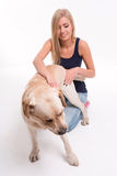 Muchacha rubia hermosa con el labrador retriever Imagenes de archivo