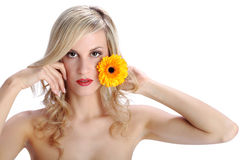 Muchacha rubia hermosa con la flor de la margarita del gerber en un blanco Fotografía de archivo libre de regalías
