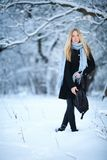 Muchacha rubia joven atractiva que camina en mujer bonita del bosque del invierno en el invierno al aire libre Ropa del invierno  Imagenes de archivo