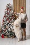 Muchacha rubia joven hermosa que juega con el perro cerca del árbol de navidad fotos de archivo