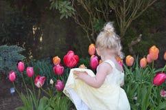 Muchacha rubia joven que mira tulipanes Imagen de archivo
