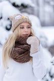 Muchacha rubia joven sonriente atractiva que camina en mujer bonita del bosque del invierno en el invierno al aire libre Ropa del Fotografía de archivo libre de regalías