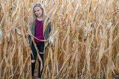 Muchacha rubia sonriente en campo de maíz Foto de archivo libre de regalías