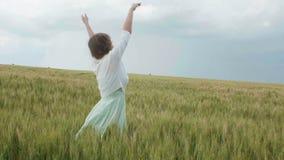 Muchacha rusa joven hermosa entre las espiguillas verdes altas del trigo en el campo Ella recoge las espiguillas en paquetes El e almacen de metraje de vídeo